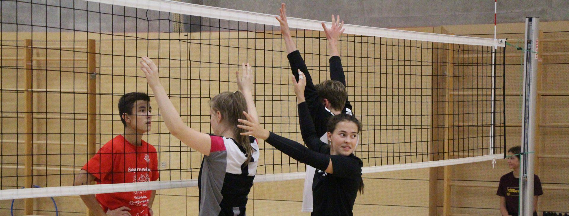 Deine Volleyballcamps
